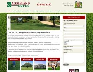 aggieland-web-design
