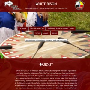 white-bison-web-development